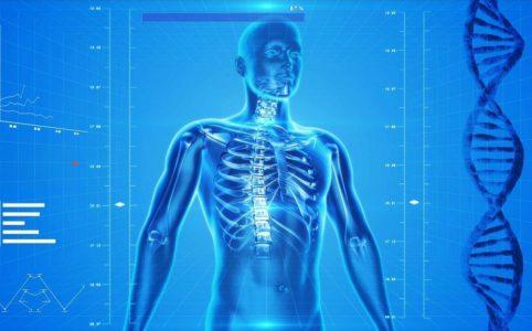 Системный подход к диагностике и лечению остеопороза