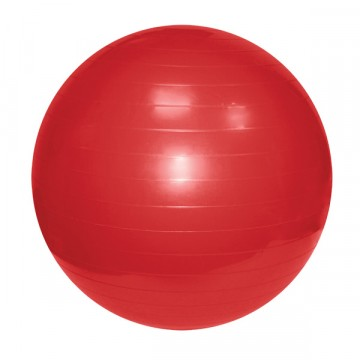Гимнастический мяч 55см в коробке с насосом GMp 55